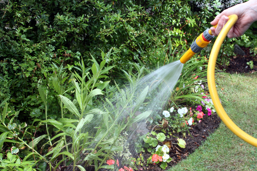 BSEACD Announces The Start Of The Summer Water Conservation Period