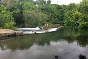 Clearing Up Concerns Over Blue Green Algae In The San Marcos Waterways
