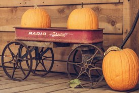 Welcome To Fall! Annual Farmer Fred's Harvest Fall Carnival