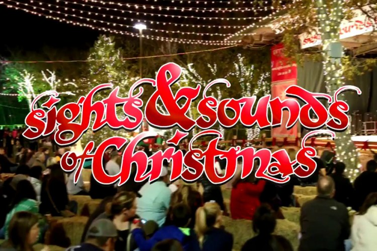 wristbands now available for this year s eight day sights sounds of christmas san marcos. Black Bedroom Furniture Sets. Home Design Ideas