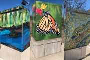 San Marcos Installs Work Of Local Artists To Three Traffic Control Boxes