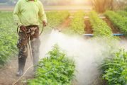 The Hays County SWCD To Host Grounds Maintenance Conference In San Marcos