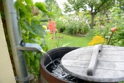 Residential Rainwater Harvesting, Healthy Lawn Training Being Offered In February