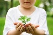 NRCS Announces 2019 Deadlines For Conservation Assistance Funding