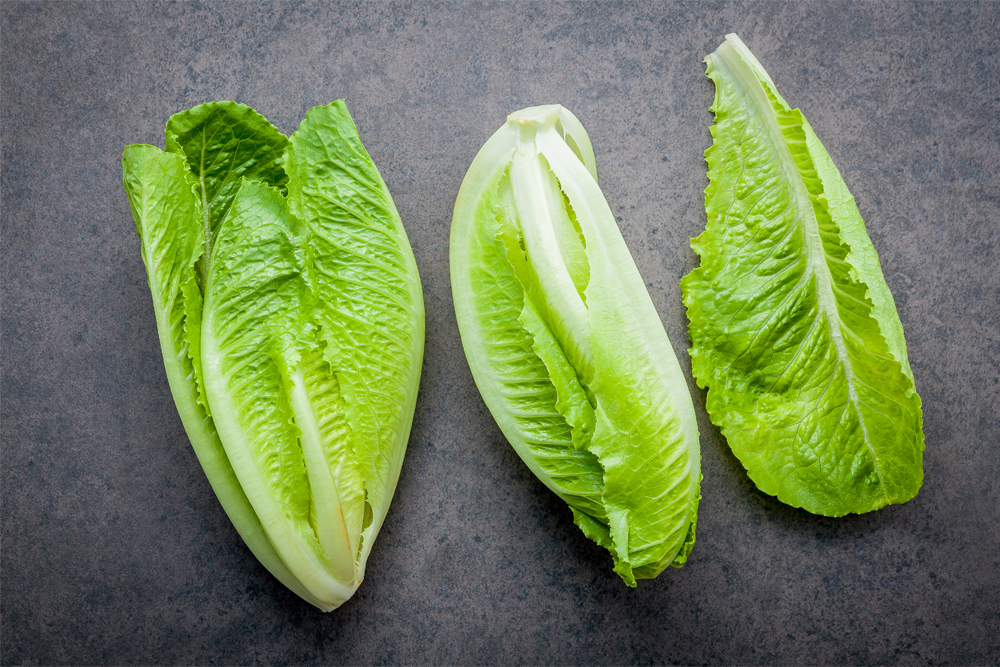 FDA Releases Report On Investigation Into The Fall 2018 Outbreak Of Illnesses Tied To Romaine Lettuce