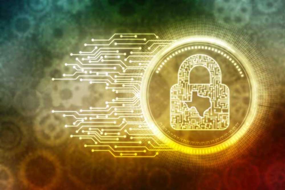 Texas Cybersecurity: Protecting Data Systems