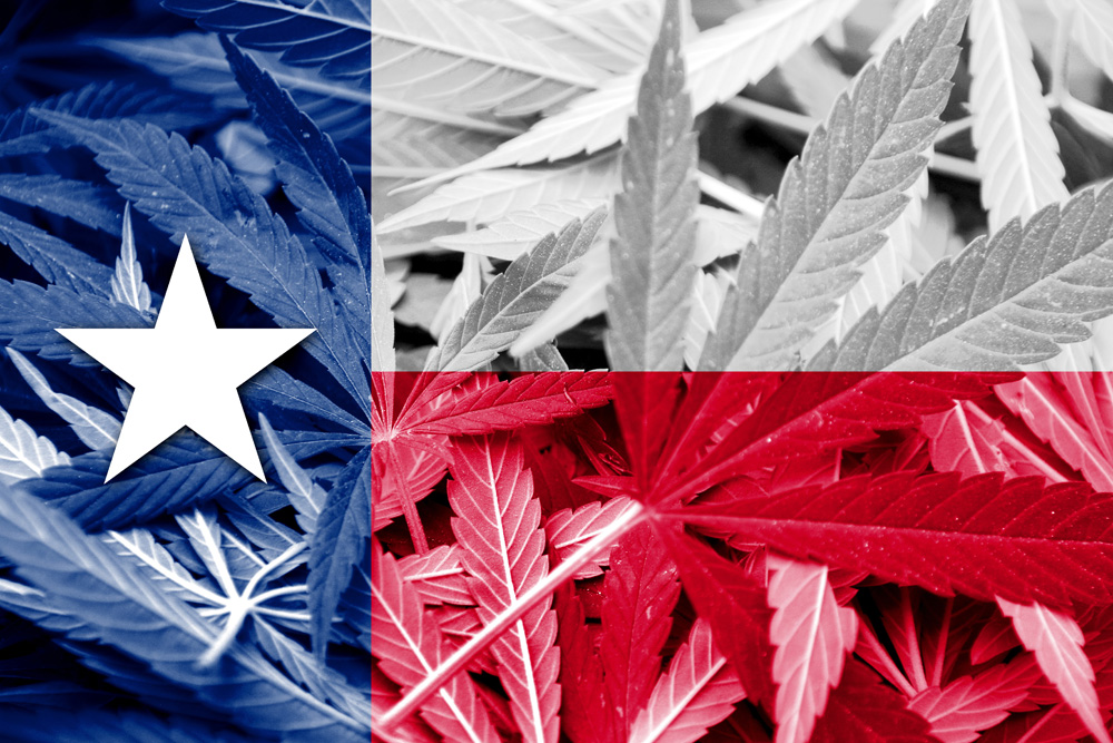 Photo of Texas DSHS Accepting Applications To Manufacture Or Sell Consumable Hemp Products