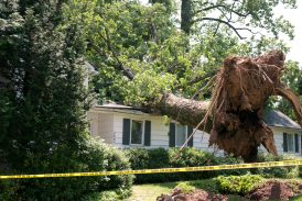 Emergency Management In Texas - How The State Prepares For The Worst