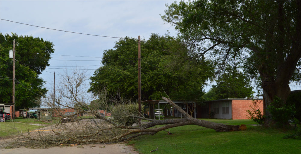 Gary Job Corps Students Respond To Aftermath Of Storm