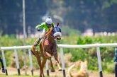 Best Jockeys In Horse Racing Events