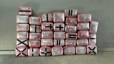 Photo of Nearly $1.5M Worth Of Drugs Seized By Rio Grande Valley Agents