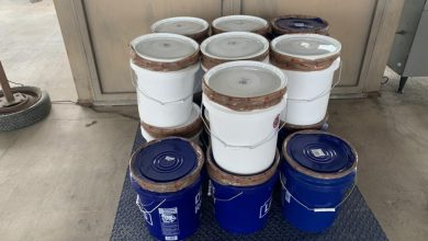 Photo of CBP Seize Over $20 Million In Drugs, Apprehend 5 Child Predators, 1 Gang Member On Texas Border
